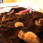 Sulle tracce della storia –   L'archeologia spiegata ai bambini